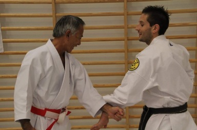 Naihanchi Kata Bunkai