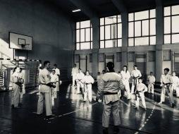 OKINAWA ISSHINRYU BASIC
