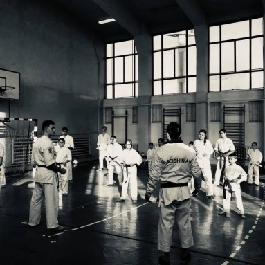 OKINAWA ISSHINRYU BASIC