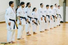 SEISHINKAN ISSHINRYU KARATE DO - BLACK BELTS 2014