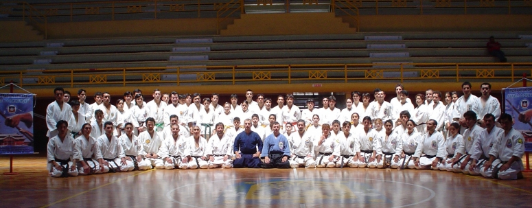 OKINAWAN KARATE &; KOBUDO FEDERATION, CHILE. 2004