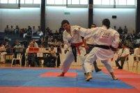 WORLD OKINAWAN KARATE & KOBUDO CHAMPIONSHIPS -KUMITE CATEGORY