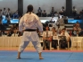 WORLD OKINAWAN KARATE & KOBUDO CHAMPIONSHIPS KATA CATEGORY