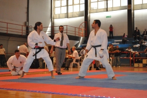 WORLD OKINAWAN KARATE & KOBUDO CHAMPIONSHIPS -KUMITE CATEGORY