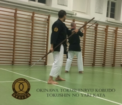 TOKUSHIN NO YARI KATA