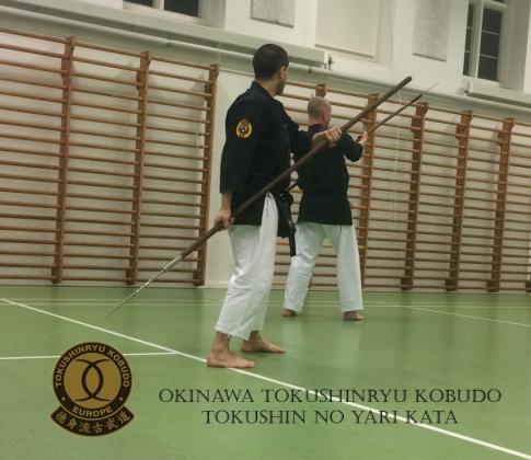 TOKUSHIN NO YARI KATA