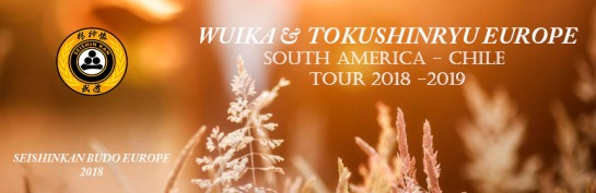 SOUTH AMERICA - CHILE TOUR 2018 -2019 OFFICIAL