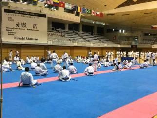 Ryukyu Kobudo Seminar - Okinawa 2018