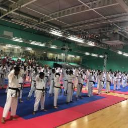 ISSHINRYU KATA SEMINAR - IWKA WORLD CHAMPIONSHIP