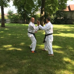 Isshinryu Karate Kata Training Session