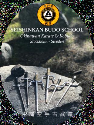SEISHINKAN Budo School - Stockholm Sweden